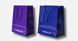 Paper Gift Bags in Plain Color