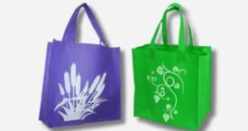 Non Woven Bag Plain + Logo