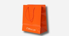 Paper Bag – Plain Orange ; glossy finish