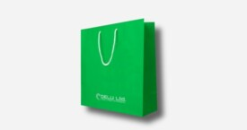Paper Bag – Plain Green ; mat finish