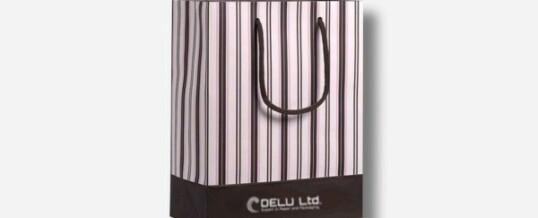 Paper Bag – Double Stripes