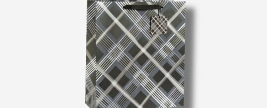 Paper Bag – Diagonal Stripes