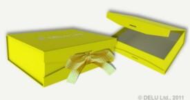 Photo box with ribbon ; Yellow