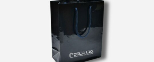 Bolsa de papel en color único más logotipo – Brillante negro
