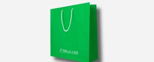 Bolsa de papel en color único más logotipo – Mate verde